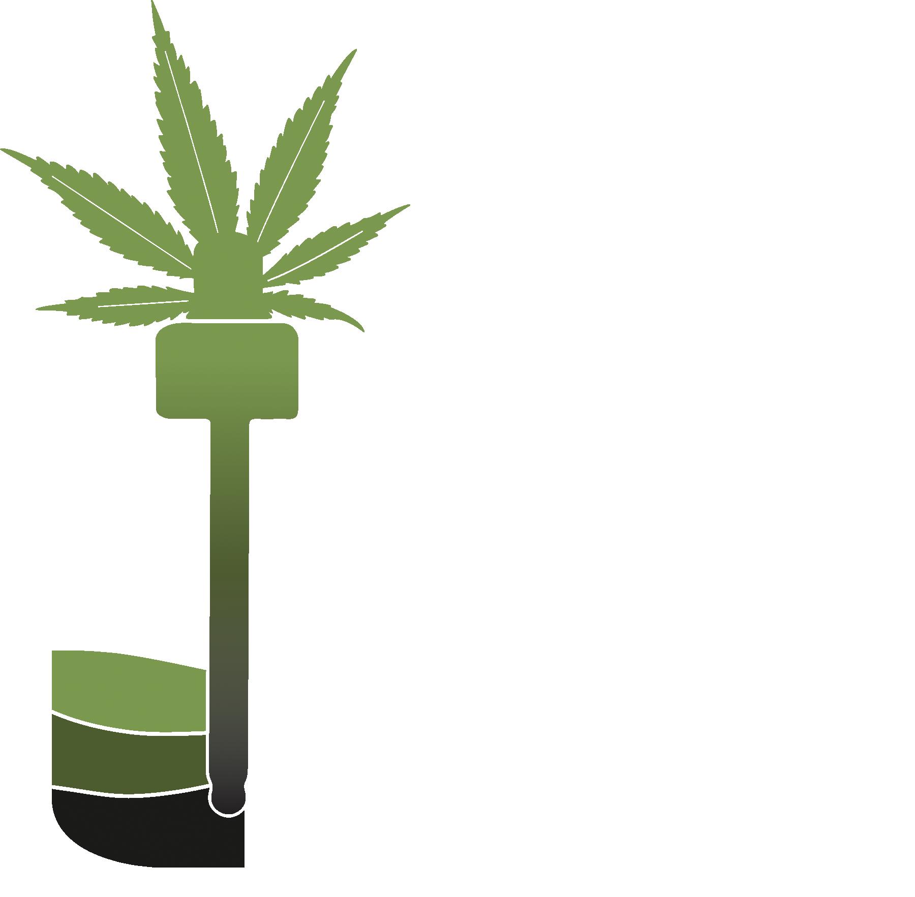 Soil to Shelf CBD